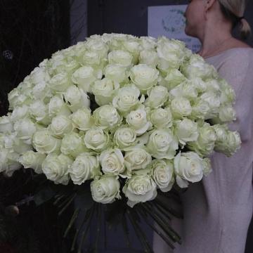 Букет №001 101 белая Роза