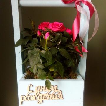 Композиция №103 розы в деревянном ящике